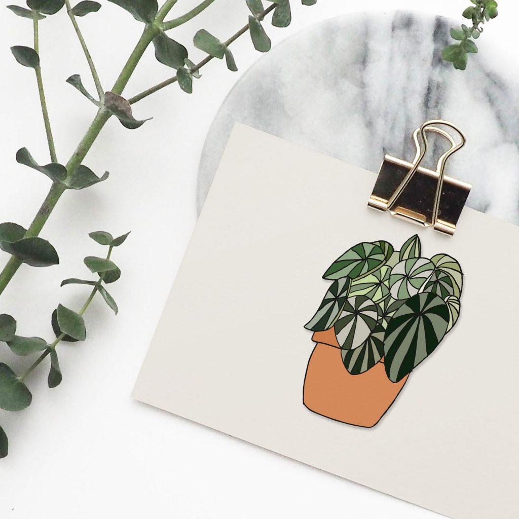 Nieuwe Stijl Grafische Vormgeving Putten Ontwerp Goedkoop Reclame Veluwe Logo Drukwerk Wallpaper Illustratie plant